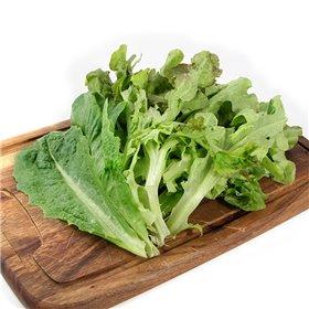 Salatblanda - poki - Akur